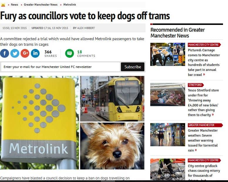 dogs_trams